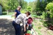 Украсим детский сад цветами